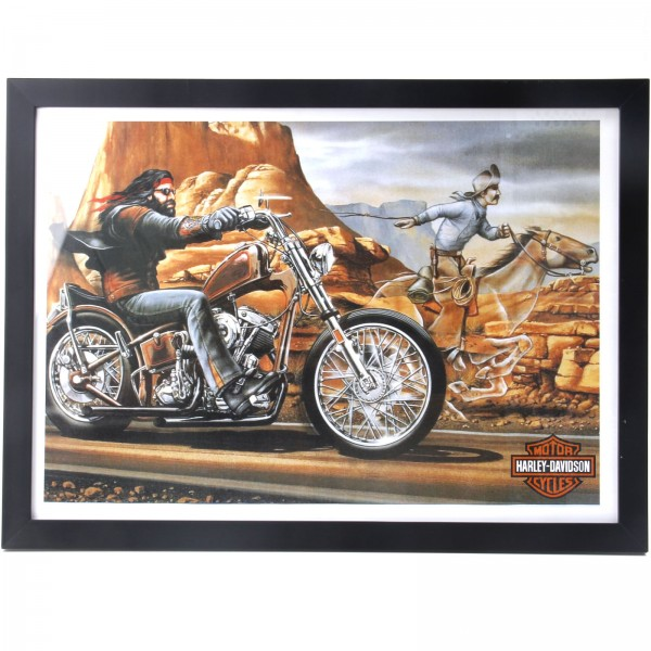 Quadro Decorativo - Ghost Rider - David Mann
